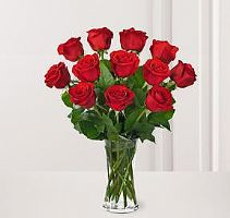 turkish red roses