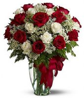 red and white roses turkey